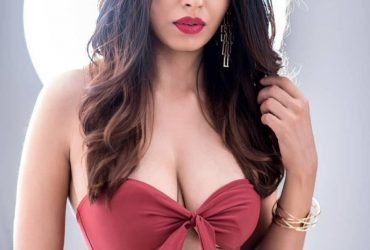 Hire Independent College Escorts In Hotel Andaz Aerocity For Girlfriend Experience -All the options of enjoyment