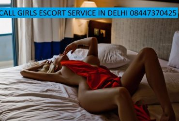 8447370425 Call Girls In Delhi Booking Tonight Shot And Night With Best Models