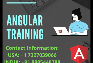 Angular Training |angularjs online training