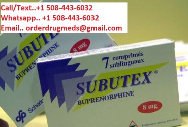 Buy Subutex From Online Pharmacy Whatsapp: +1 (757) 561-0686
